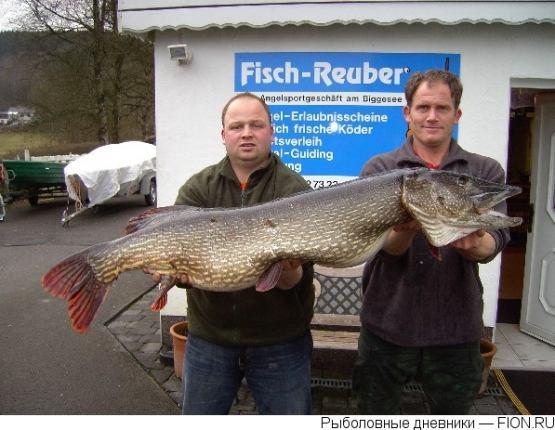 сколько лет рыбаку