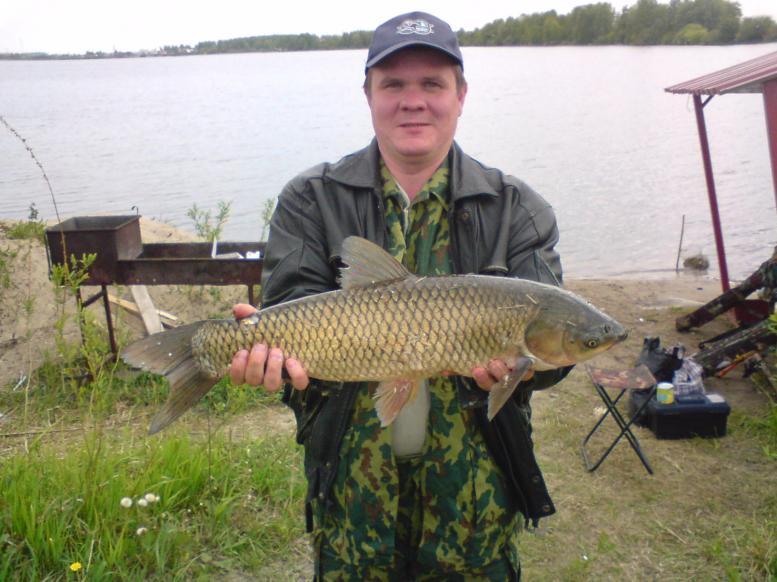 бисеровские озера платная рыбалка