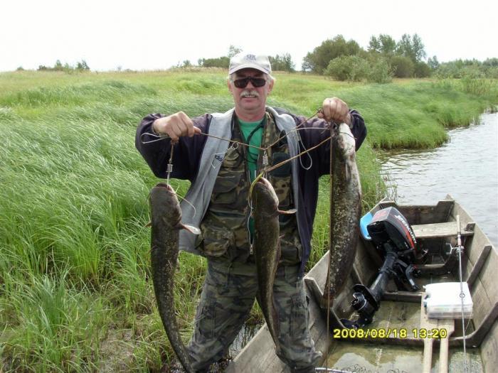 участки припяти по рыбалки