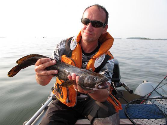 Охота и рыбалка — теперь на телеканале «Дикий»
