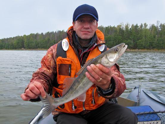 рыбалка в финском заливе форум холодную погоду