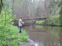 рыбалка река красная калининградская область рыбалка