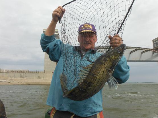 клуб рыбаков и охотников астрахань
