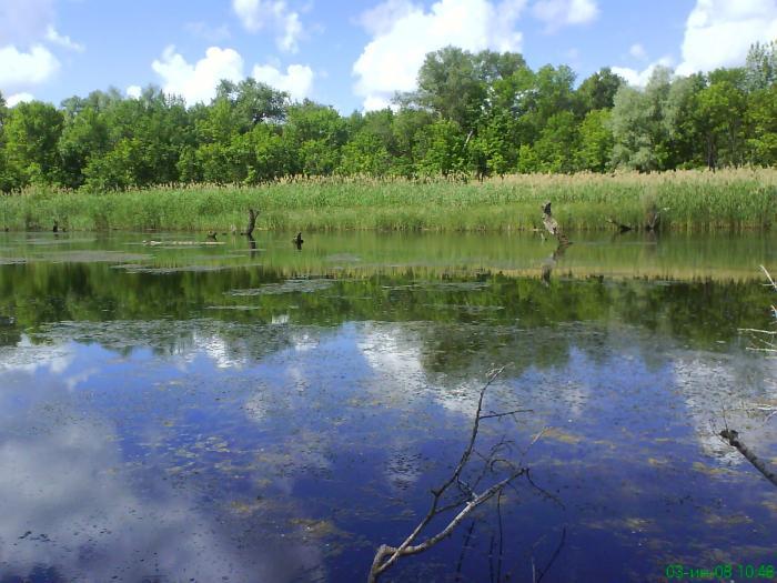 рыбалка щучье озеро пермский край
