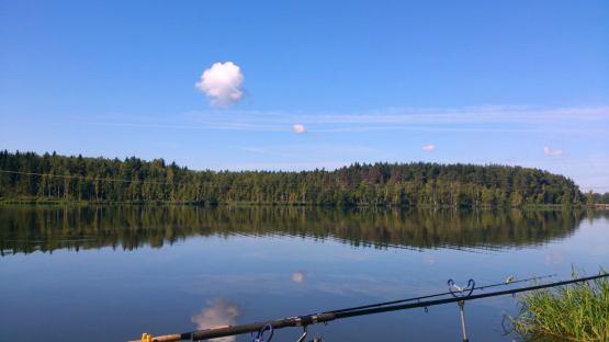 пруд в боровково рыбалка