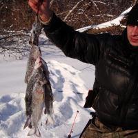 ловля ленка охота рыбалка