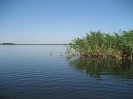 озеро лиман рыбалка