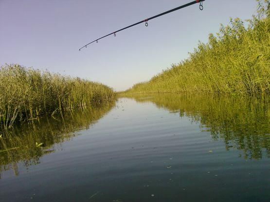 рыбалка фото поселок гандурино астраханской области