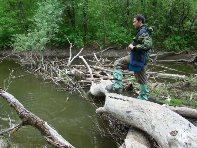 рыбалка в протоке на мелководном