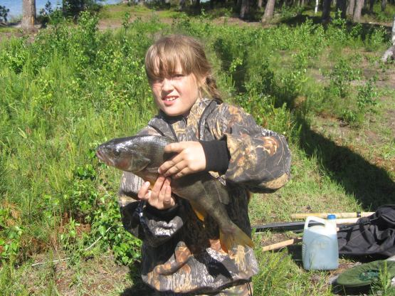 красный сулин рыболовы и охотники