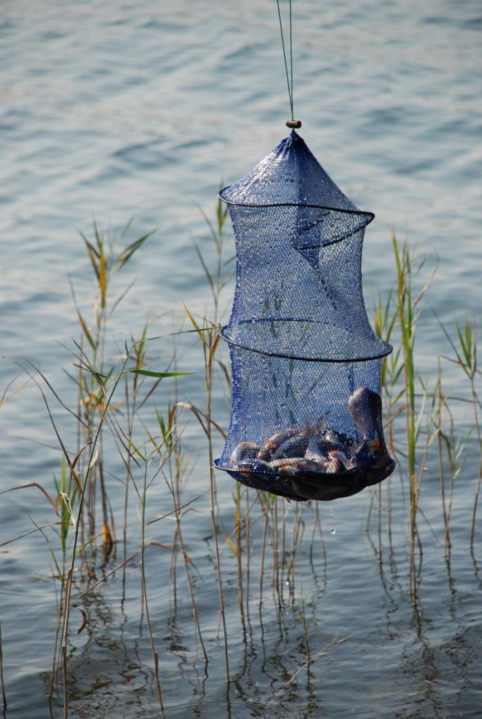 рыбалка на западной двине полоцк