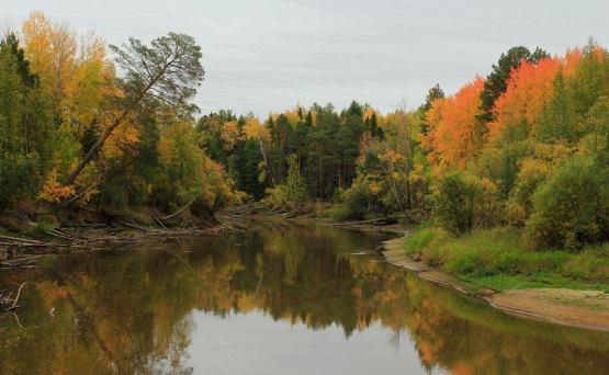 рыбалка держи реке осенью