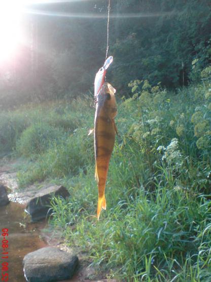 рыбалка оредеж апрель