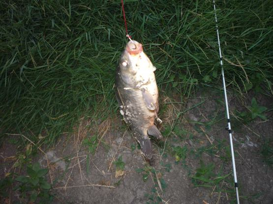 рыбалка на реке калалы в краснодарском крае