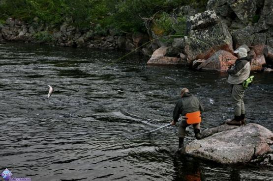 рыбалка на каховском водохранилище