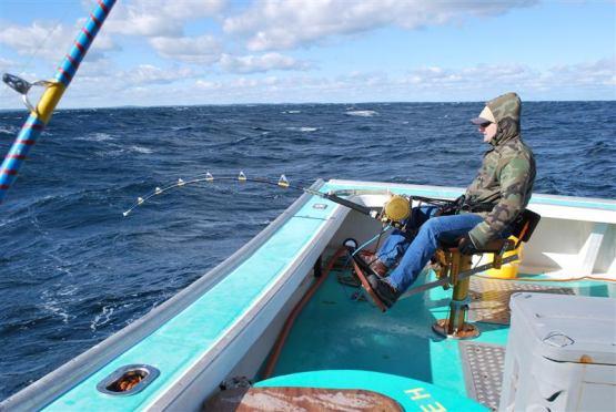 рыбалка на тунца фото