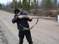 охотники и рыболовы котласа
