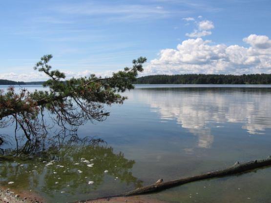 отрадное озеро рыбацкий берег