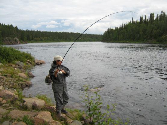 как ловить сетью сплавом