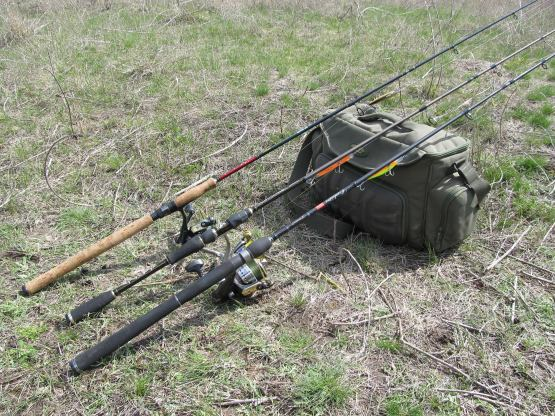 рыбалка удалась минус