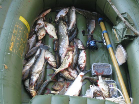 ловим рыбу в саратове